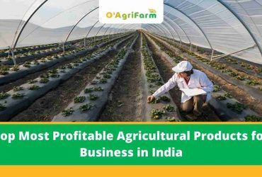 Top Most Profitable Agricultural Products for Business in India,