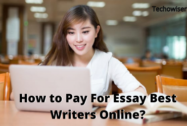 How to Pay For Essay Best Writers Online?